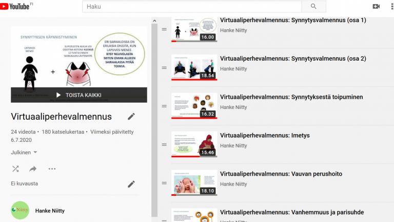 Kuvakaappaus Niitty-hankkeen Youtube-kanavalta