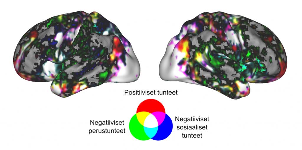 Kuva eri tunteisiin liittyvistä aivoalueista.