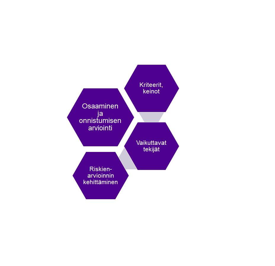 Hankkeen tavoitteena on kehittää riskienarviointia, tukea työpaikoilla riskienarviointia tekevien henkilöiden riskienarviointiosaamista ja arvioida riskienarvioinnin onnistumista erilaisin kriteerein.