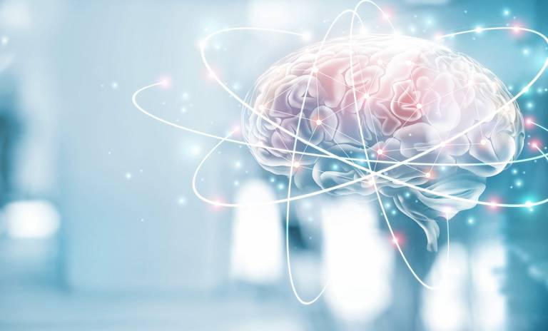 Tyylitelty kuva aivoista